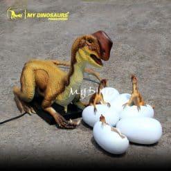 Oviraptor with eggs 1