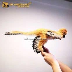 Anchiornis statue 1