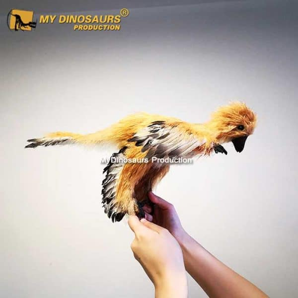 Anchiornis statue