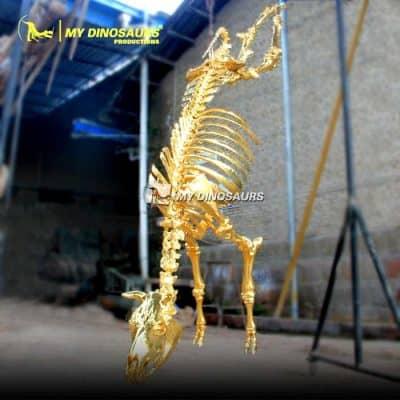 Golden animal skeleton 1