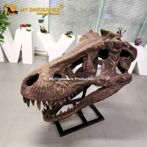 Life Size T REX Skull 1