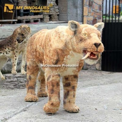 Saber toothed cat 1