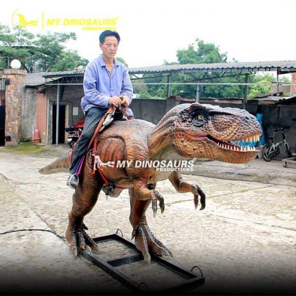 riding a dinosaur