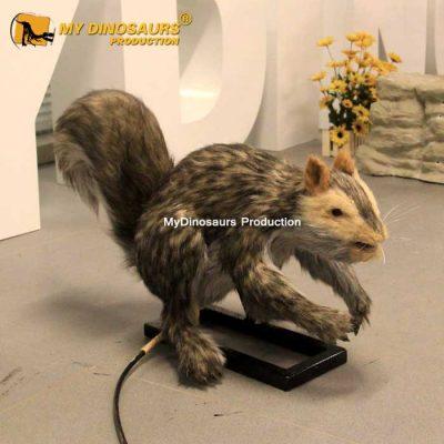 Animatronic squirrel 1
