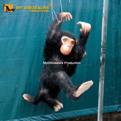 Furry Monkey