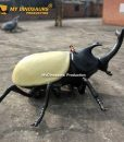 Beetle scooter 6
