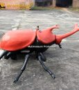 Beetle scooter 7