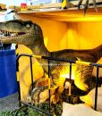 Life size raptor for sale 2
