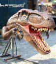 Wall Mounted Dinosaur Head 1 (2)