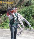 Spinosaurus arms puppet