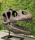 allosaurus skull 1