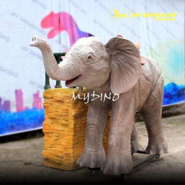 Elephant ride 1
