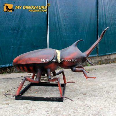 Unicorn beetle 1
