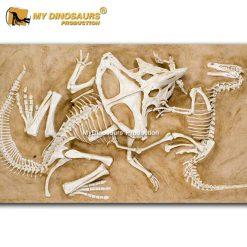 dinosaur fossil wall sculpture