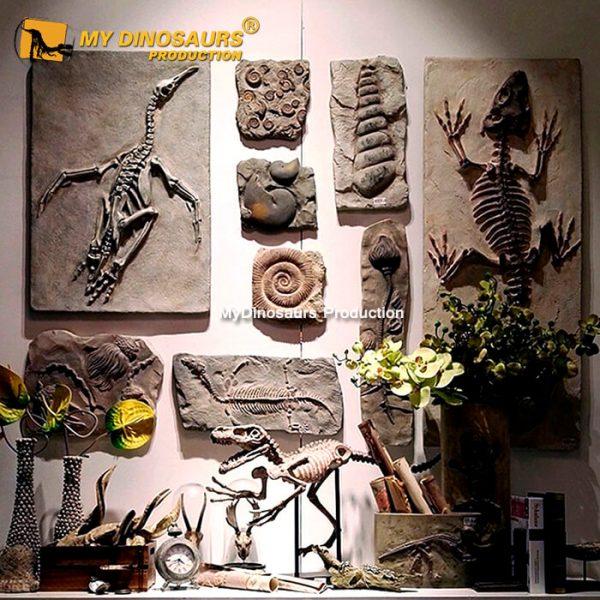 Wall mounted dinosaur fossils