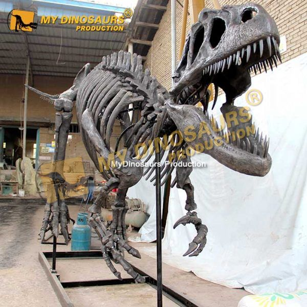 Allosaurus skeleton 1