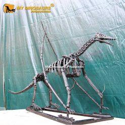 Rhamphorhynchus skeleton 1