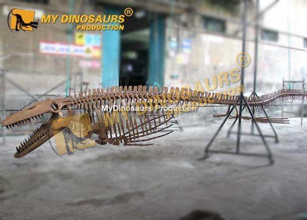Tylosaurus Skeleton 1
