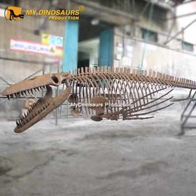 Tylosaurus Skeleton