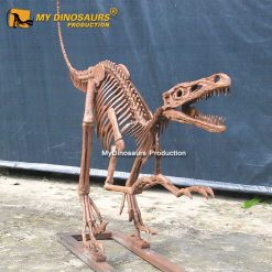 life size raptor skeleton 1