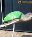 turtle statue 6