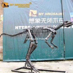 dryosaurus skeleton 1