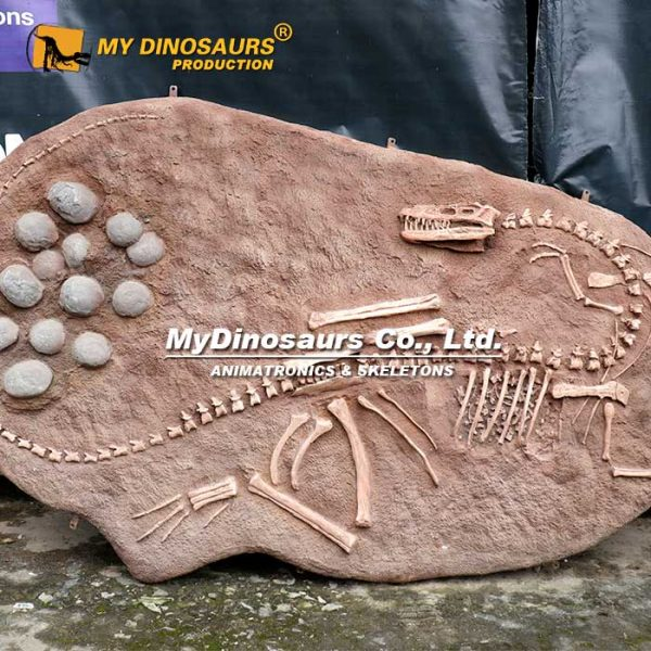Coelophysis fossil cast