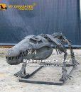 crocodile skeleton 1