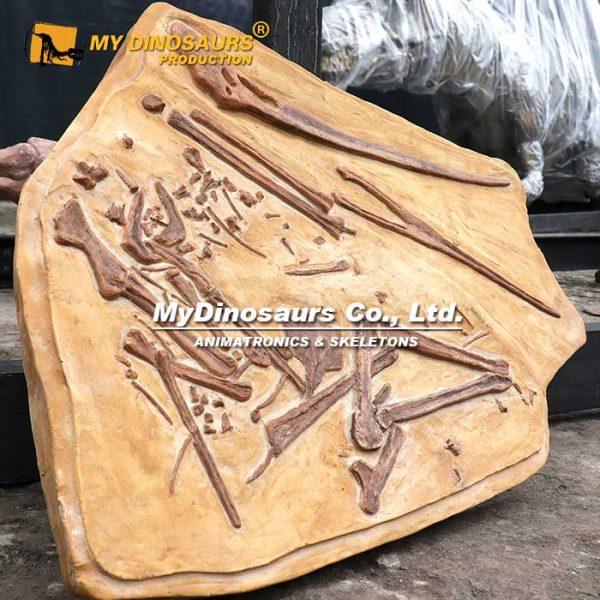 pterosaur cast 2