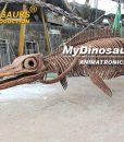 Himalayasaurus skeleton 2