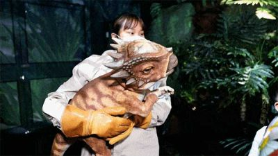 Jurassic Park Film Props Exhibition 12