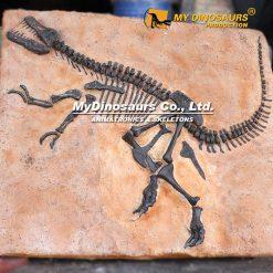 T REX Fossil Plate