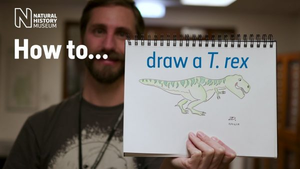 dinosaur teaching idea