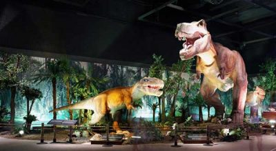 How to Make Your Dinosaur Exhibition Exclusive 7