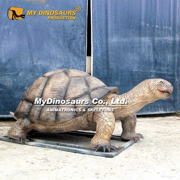 Animatronic Tortoise 4