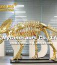 gild triceratops skeleton 1