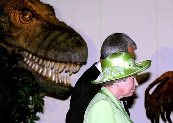 GIANT! Monster Predators Exhibition9