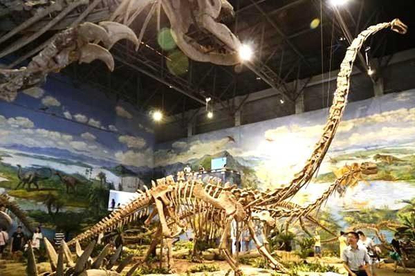 Zigong Dinosaur Museum3