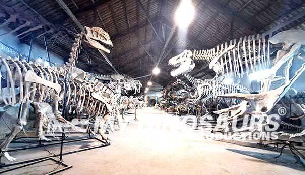 Zigong Dinosaur Museum7