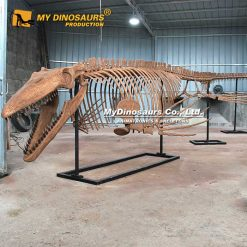 tylosaurus skeleton 2