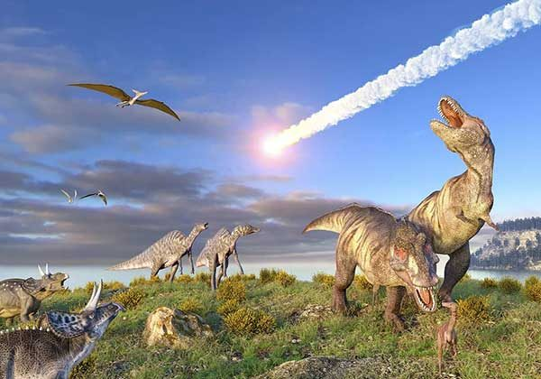 Dinosaur Facts That You May Don't Know 1