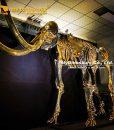 gold mammoth skeleton 4